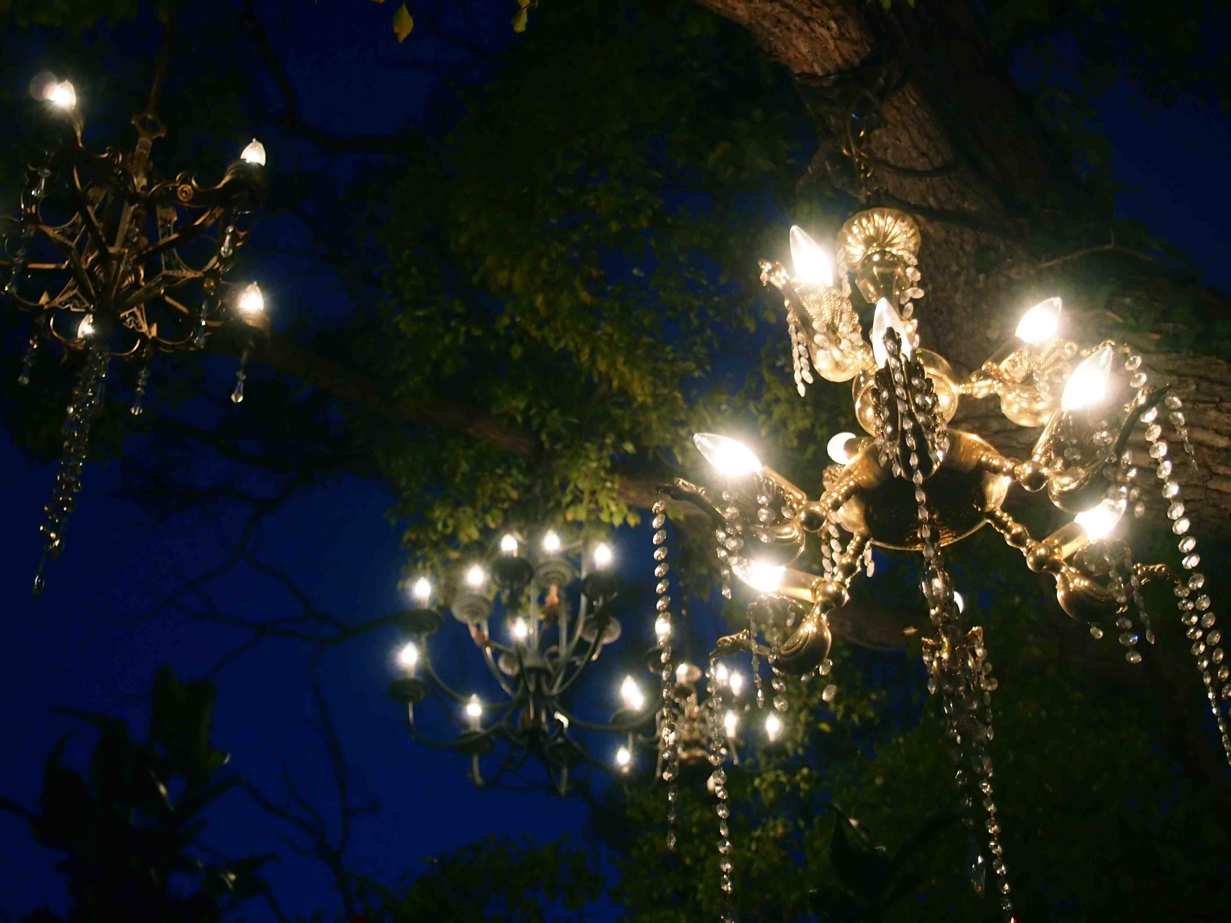 Chandelier Tree - Silverlake | LA Living | Pinterest | Wanderlust