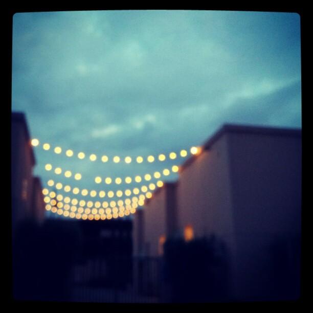 twinklelightsattwilight
